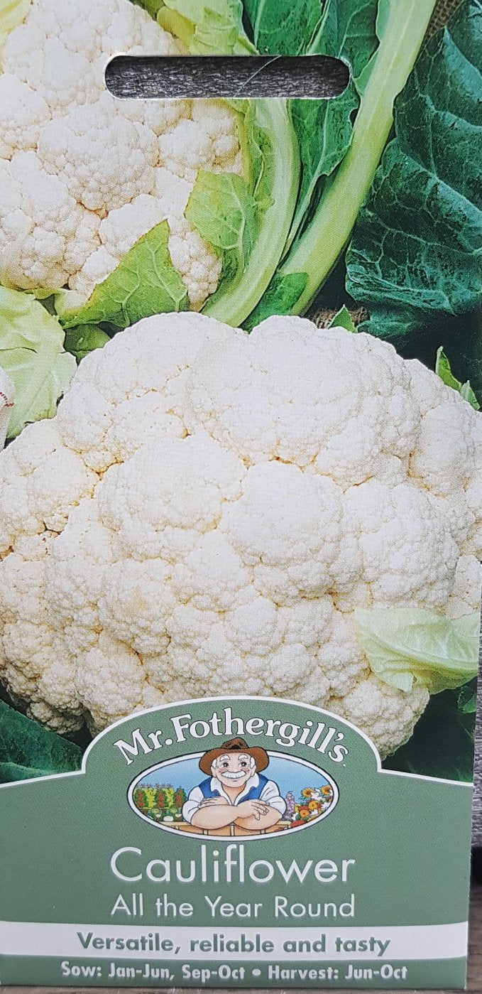 Cauliflower (All The Year Round)