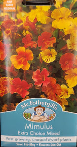 Mimulus (Extra Choice Mixed)