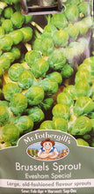Load image into Gallery viewer, Brussels Sprout (Evesham Special)