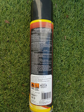 Load image into Gallery viewer, Ant & Crawling Insect Killer Spray 300ml