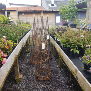 Willow Spiral Obelisk 150cm
