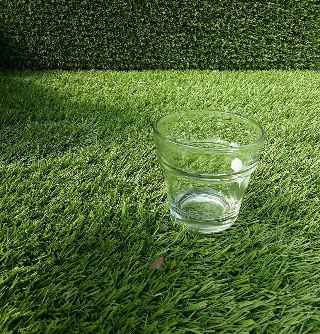 Indoor Clear Cactai Mini Pot 3cm x 2.5cm