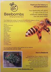 Beebombs Save The Bees