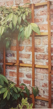 Load image into Gallery viewer, Prestige Wooden Trellis 180cm H x 90cm W