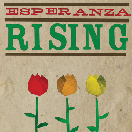 Load image into Gallery viewer, Esperanza Rising