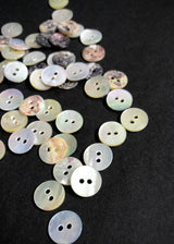 Shell Buttons, Raw. various sizes