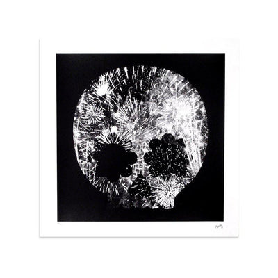 Explosion, Black & White by Matt Goldman | Print | Poster Child Prints