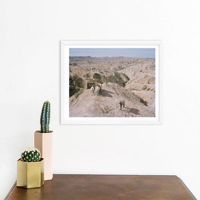 Badlands Bighorn | Benjamin Rasmussen | Print | Poster Child Prints