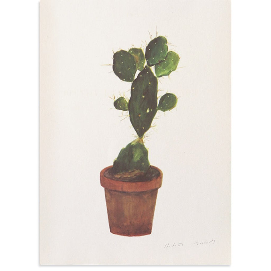 Cactus | Poster Child Prints | Found Art | One of a Kind