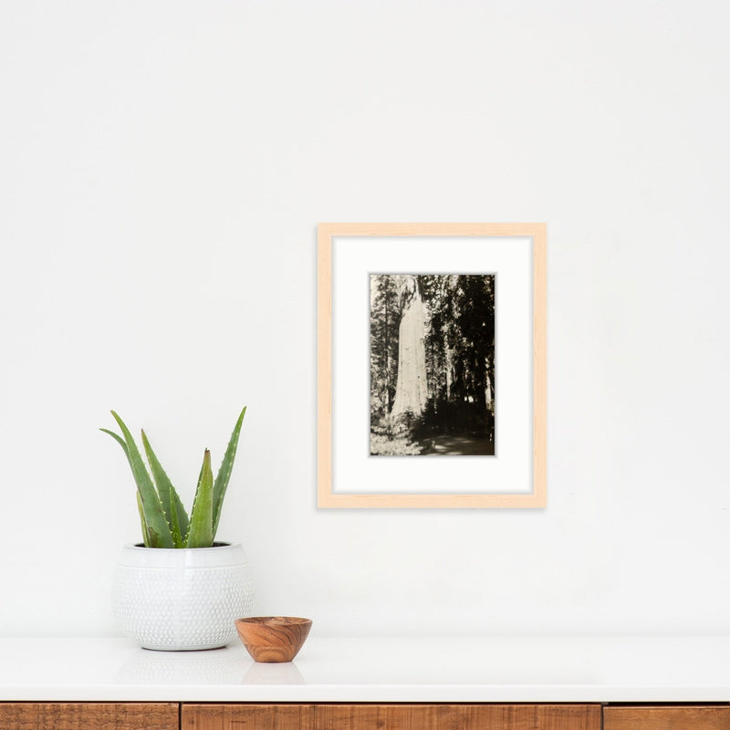 Giving Tree | Poster Child Prints | Found Art | One of a Kind