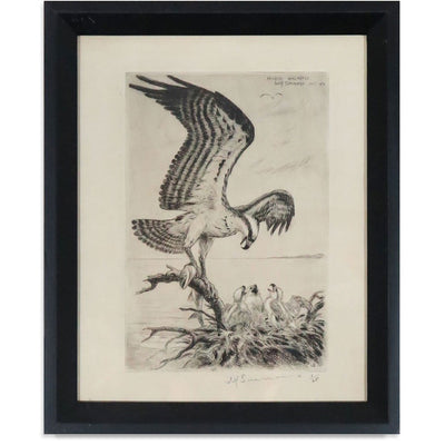 Found Art | Poster Child Prints | Lithograph | One-of-a-Kind | Bird Art
