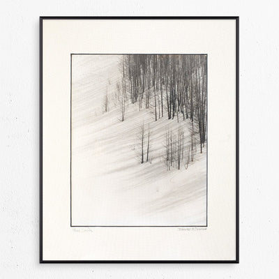 Wind Drifts by Found Art | Found Art | Poster Child Prints