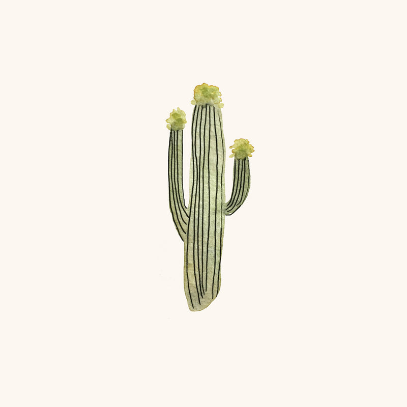 Saguaro by Sara Combs | Print | Poster Child Prints