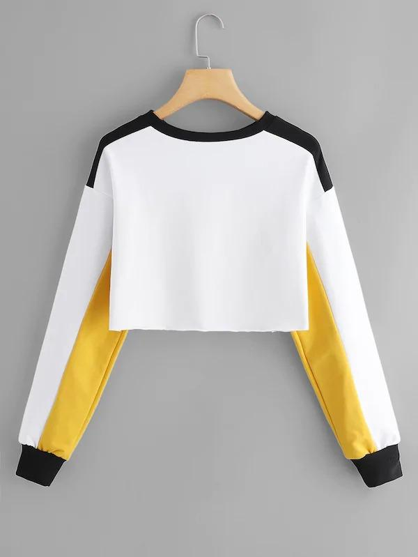 Letter Print Color Block Crop Sweatshirt