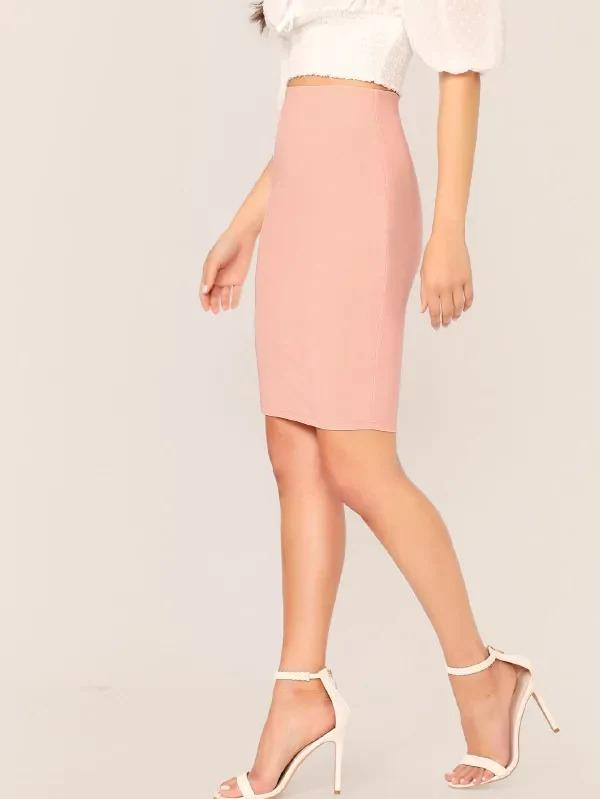 Solid Zip Back Bodycon Pencil Skirt