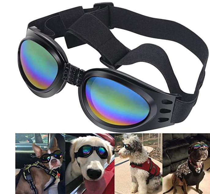 Cool Dog Protection Goggle