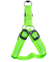 Glowing Harnesses In Dark For Pets Protect Your Friend