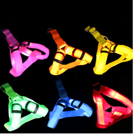 Glowing Harnesses In Dark For Pets Protect Your Friend - EbazoneShop