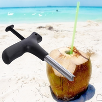 Stainless Steel Coconut Opener Driller Cut Hole Fruit Tool