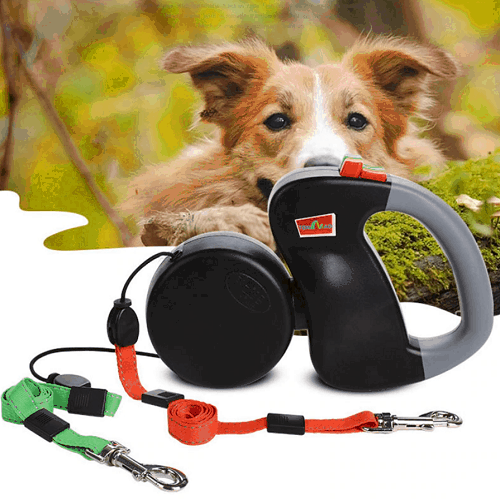 Removable Pet Dog Double Lead Leash No Tangle Same Time - EbazoneShop