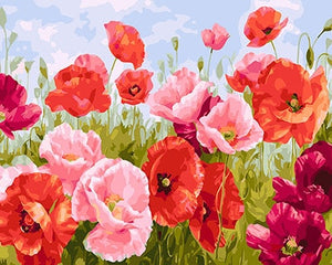 Flower Painting By Numbers Canvas Oil Painting