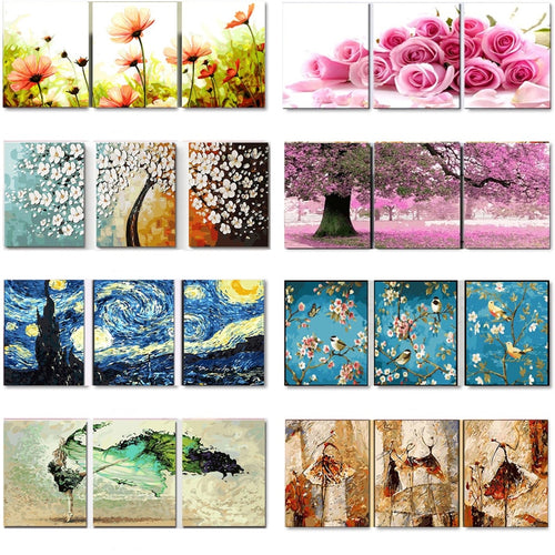3 pcs Oil Painting by Numbers Flower