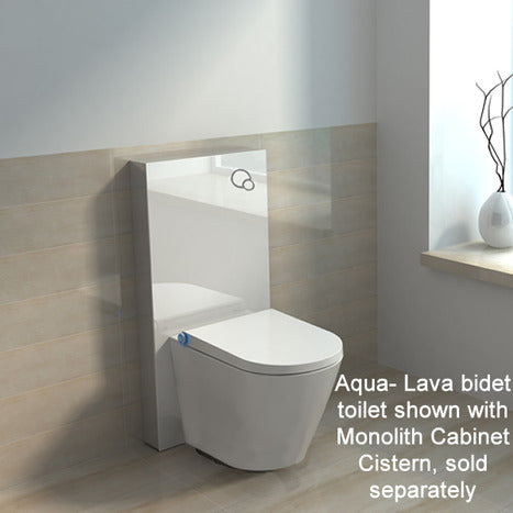 Japanese style smart toilet bidet