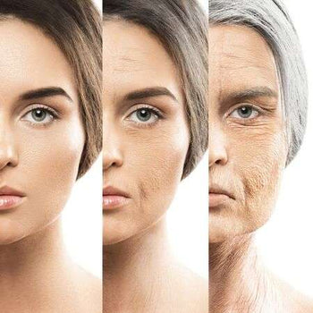 Age is Beauty: The Pro-Ageing Movement
