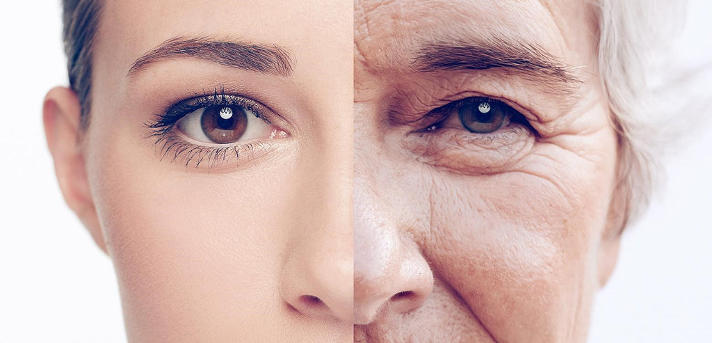 lady with two stages of aging blog article about the anti-aging properties of collagen