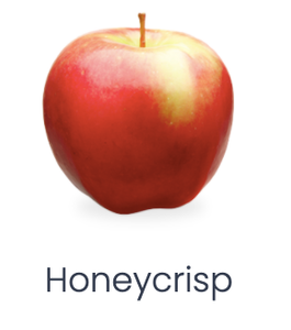 Chelan Fresh: Honeycrisp