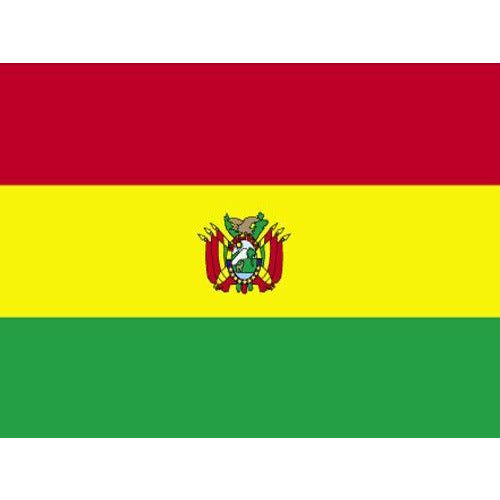 Bolivia Government Flag