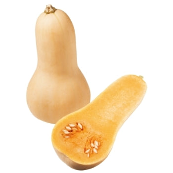 Semences de Courge Butternut