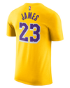 Icon LeBron James Youth Los Angeles Lakers Player Tee