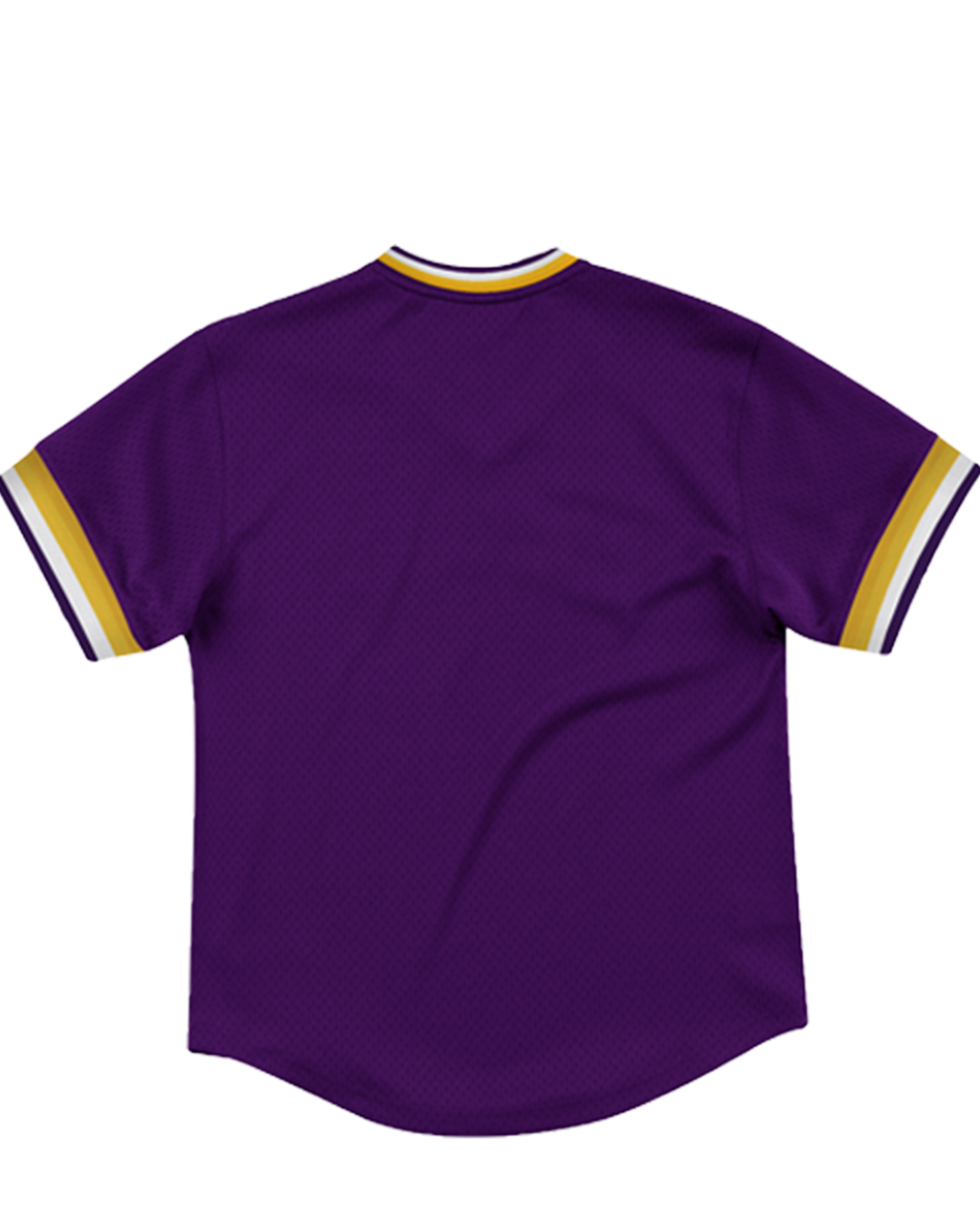 Special Script Mesh Womens Los Angeles Lakers V-Neck
