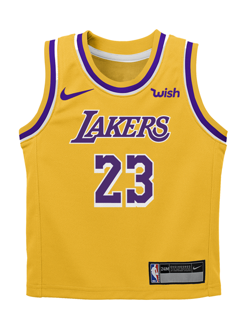 a1608ec8c514 Los Angeles Lakers Infant LeBron James Icon Replica Jersey