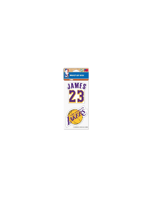 Los Angeles Lakers LeBron James 4x8 Decal