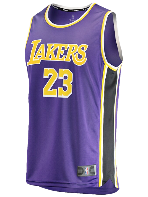 new concept 4a4dd 0f136 Los Angeles Lakers LeBron James Replica Jersey - Purple ...