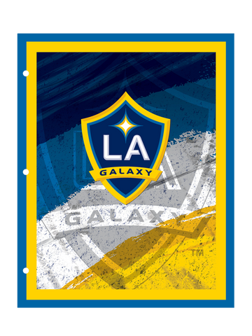 Los Angeles Galaxy Portfolio
