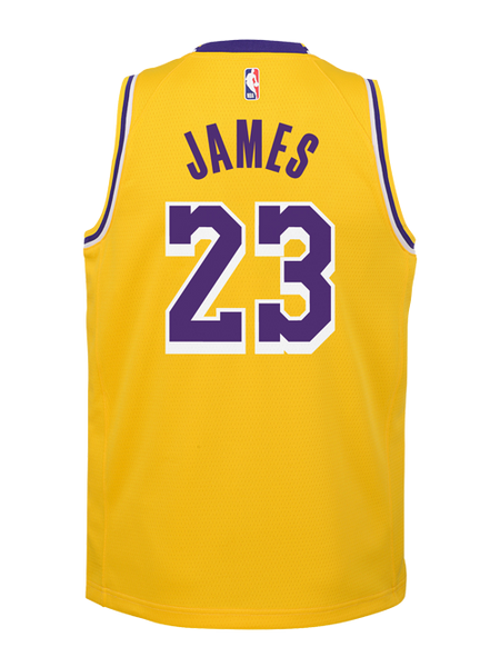 Los Angeles Lakers Youth LeBron James Icon Edition Swingman Jersey – TEAM  LA Store