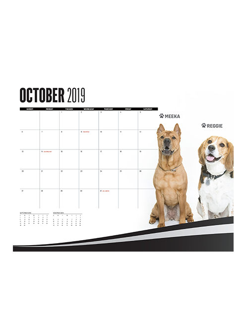 La Kings 2019 We Are All K 9s Dog Calendar Team La Store