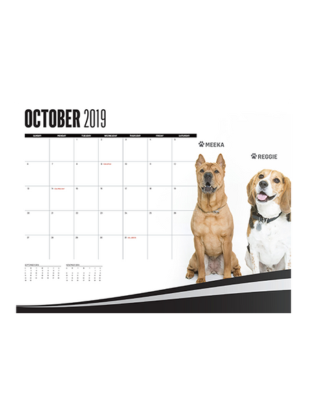LA Kings 2019 We Are All K-9s' Dog Calendar