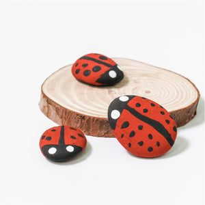 Lady Bird Rocks Mini Eco Kit