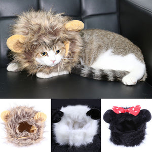Pet cat funny turned wig puppy cat cap lion small ear wig