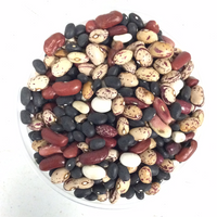 Mixed Dried Beans 1#