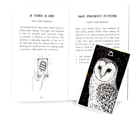 The Wild Unknown Animal Spirit Deck and Guidebook - ENG