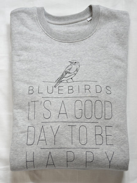 Bluebirds sweater