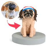 AU Sales-Custom Fully Customizable 1 Pet Bobbleheads