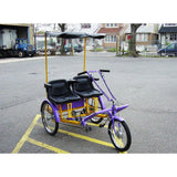 "Worksman Side-by-Side ""Team Dual"" 1-Speed Recumbent Trike-Lightfoot Cycles"