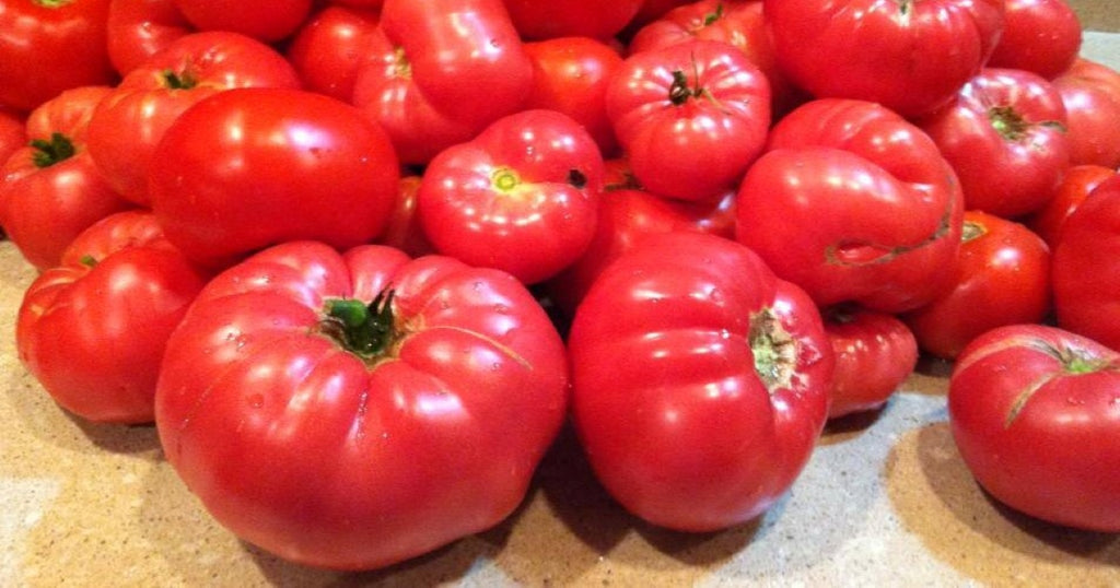 How to Grow Big Delicious Tomatoes and Peppers