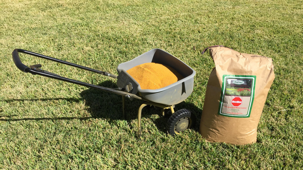 Fall Fertilizer: A great lawn next year starts now